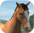 My Horse iPhone