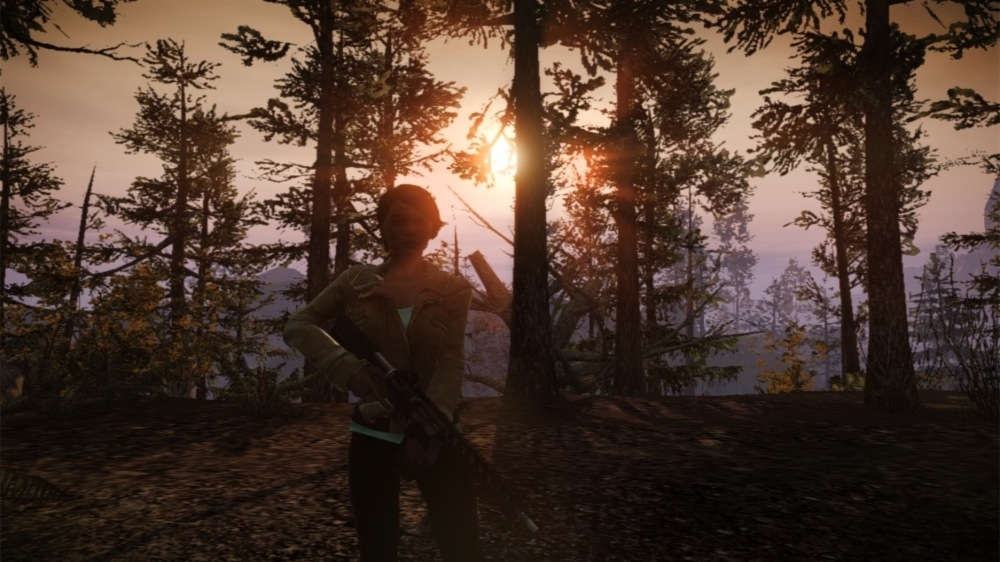 how to play state of decay breakdown